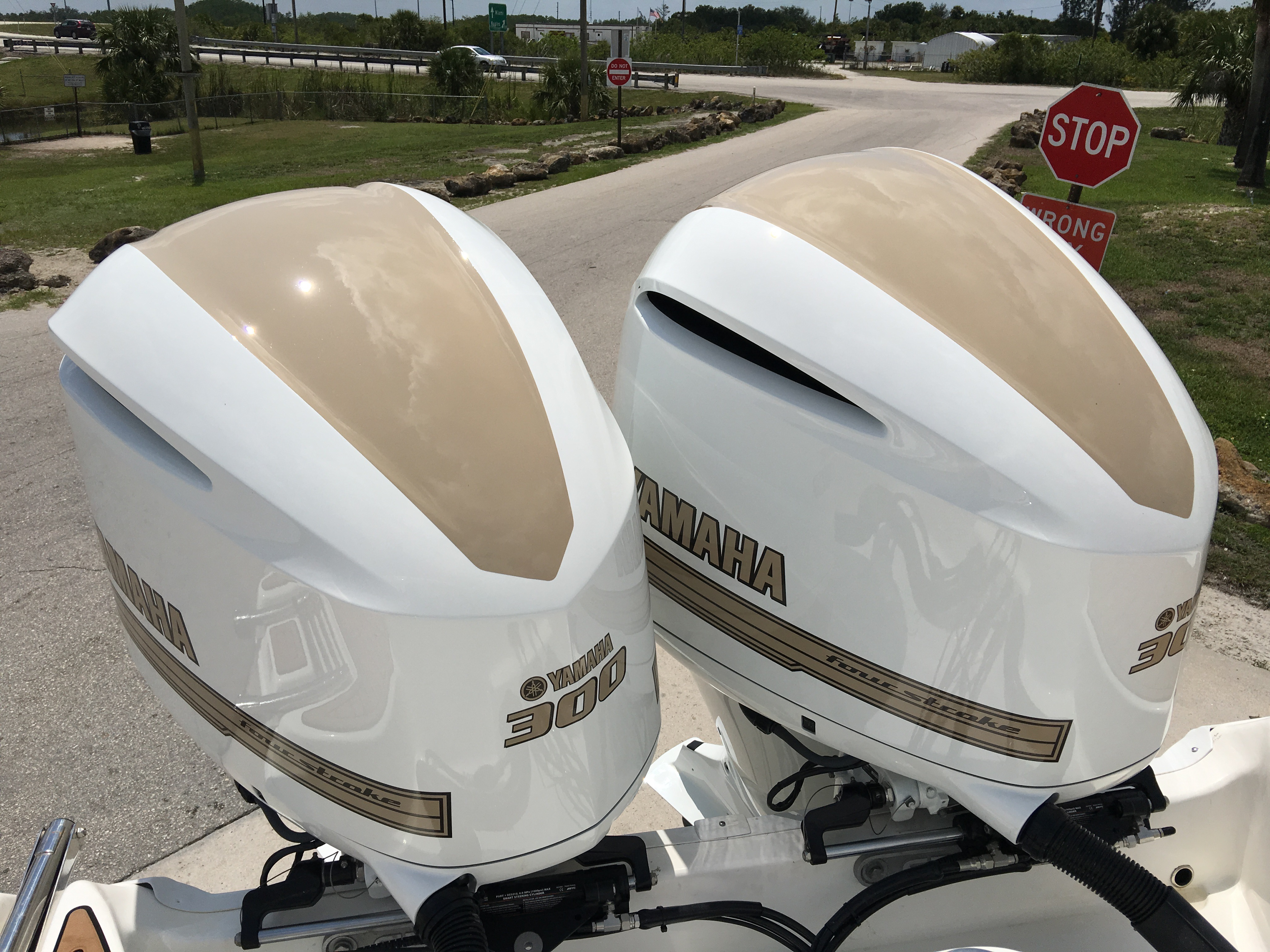 how to clean algae off outboard motor